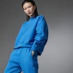 Blue Version Batwing Crew Sweatshirt