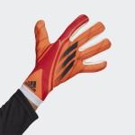 X Training Gloves