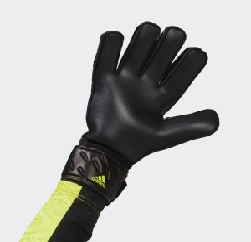 Predator Match Goalkeeper Gloves