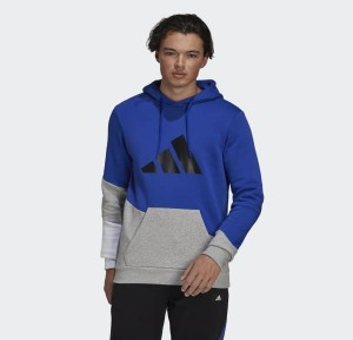 adidas Sportswear Colorblock Hoodie