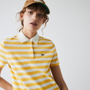 Women's Regular Fit Mesh Collar Striped Polo