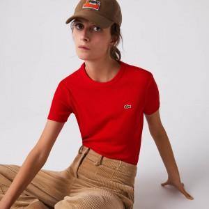 Women's Soft Cotton Crew Neck T-shirt