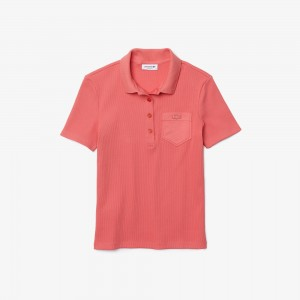 Women's Slim Fit Ribbed Cotton Polo