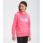 Girls Logowear Pullover Hoodie