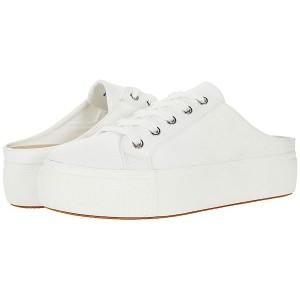 Steve Madden Noteworthy Sneaker White
