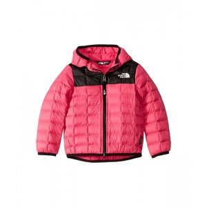ThermoBall Eco Hoodie (Toddler)