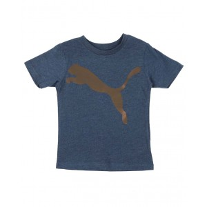 speed pack big cat graphic tee (4-7)