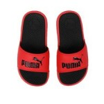 cool cat ps slides (11-3)
