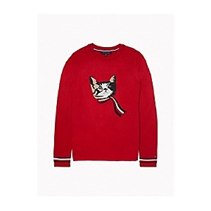 Essential Kitten Holiday Sweater