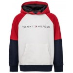 Toddler Boys Classic Pullover Hoodie