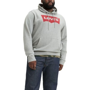 Mens Big and Tall Graphic Hoodie