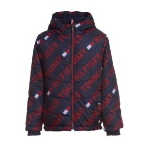 Little Boys Printed Puffer Jacket